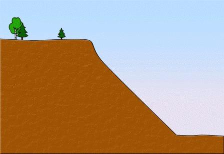 склон можно укрепить, высадив туда растения
