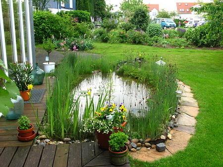 маленький пруд перед домом