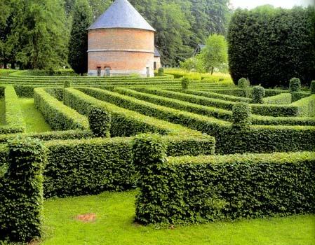 живая изгородь - это целое искусство