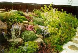 непосредственно под альпийской горкой устраивают хороший дренаж, горные растения не любят переувлажненные почвы