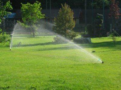 автоматические системы удобны для полива газонов