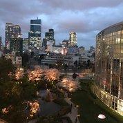 Вечером Токио преображается: невзрачные, почти московские, цвета зданий и неба темнеют, набирают чернильной сочности, приобретая драматизм. Особенно эффектно все это выглядит на фоне сакуры, цветущей в многочисленных парках и скверах, на каждом шагу, занимающих малейший свободный от построек уголок. #архитектура #дизайн #горд #большойгород #городсад #токио #сакура #небоскребы  #атмосфератокио #tokyoarchitecture #design #architecture #tokyo #tokyobynight #tokyocity #каменныеджунгли #skyline #sakura