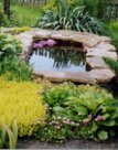 Красивый сад без больших затрат