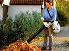 Выбор пылесоса – воздуходувки для дачи
