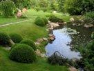 Как устроить пруд в саду